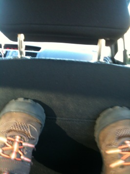 back seat driving