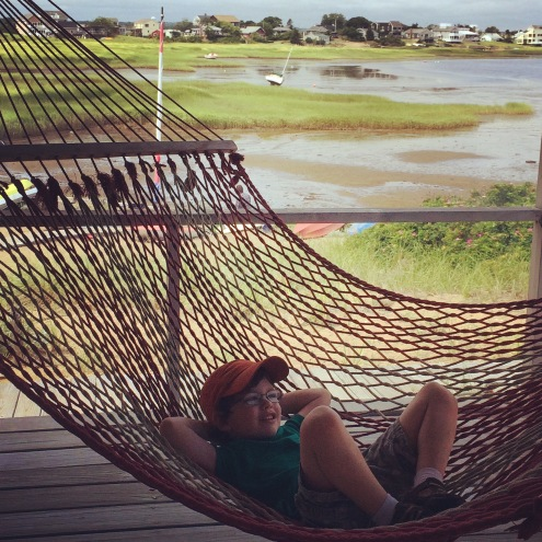 hammock by the bay