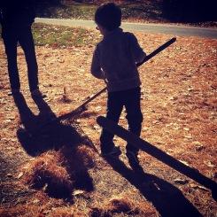 raking the pine needles