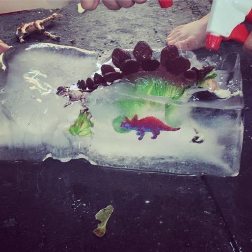 Block of frozen animals