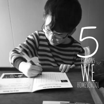 why we homeschool, reasons to homeschool, should I homeschool